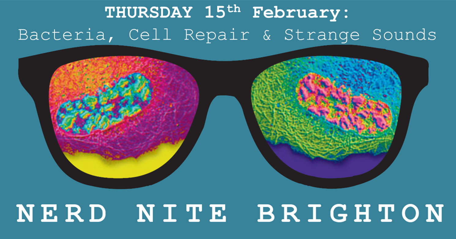 15th Feb Poster - Bacteria, cell repair & strange sounds